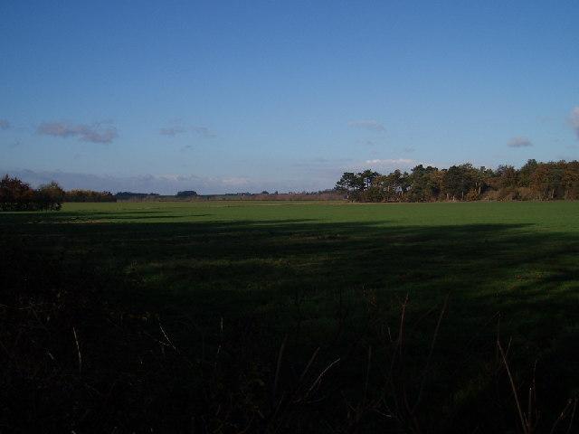 Town Farm, Oakley