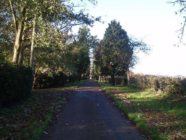 Driveway past Town Farm