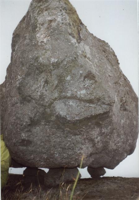 Glacial boulder on Ben Hogh