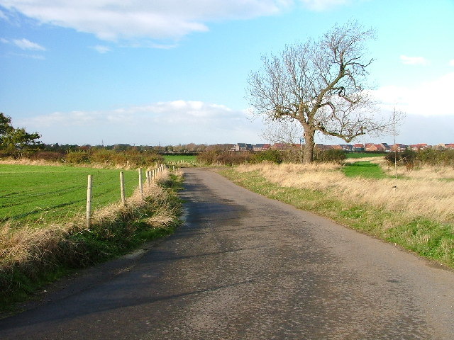 Track to Barwick Farm