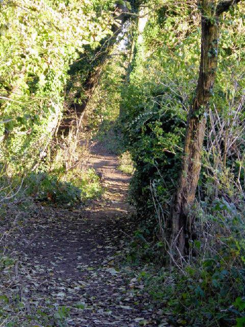 Footpath to Borrage Green Lane