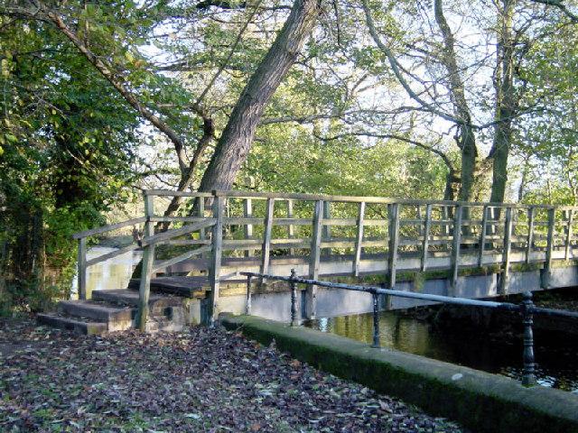 The Rustic Bridge