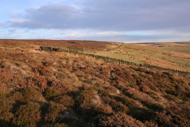 Wall, Shackleton Moor