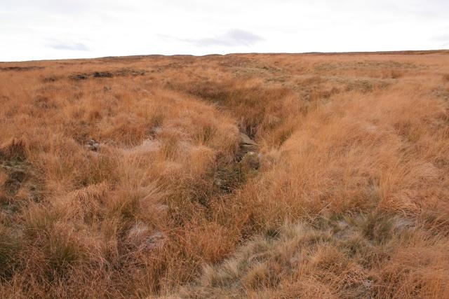Stony Dike, Shackleton Moor
