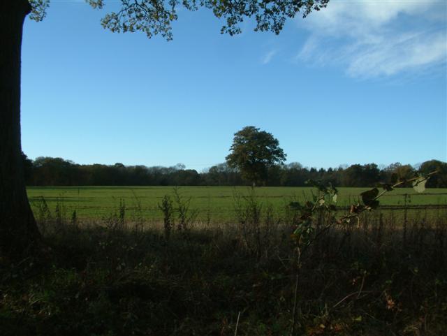 Wolverton Common