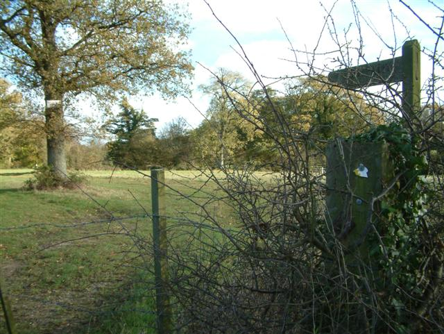 Footpath to Monk Sherbourne