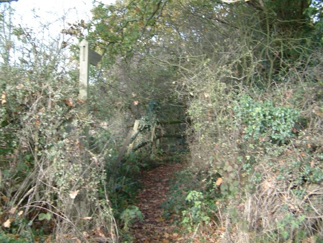 The footpath to HollyBush Farm