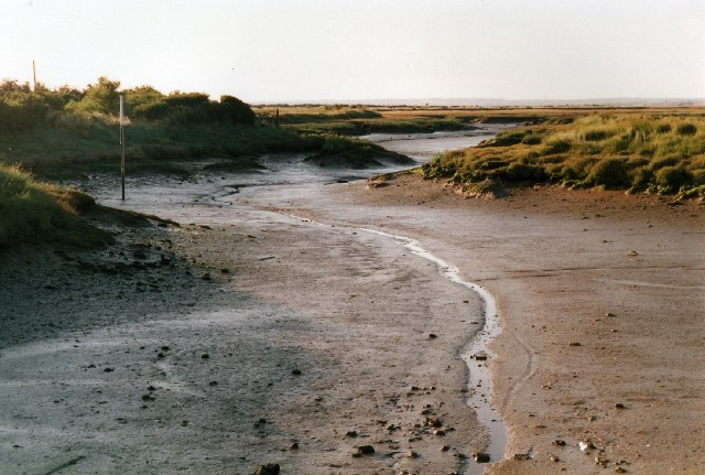 The extreme southern end of Mayland Creek at low tide