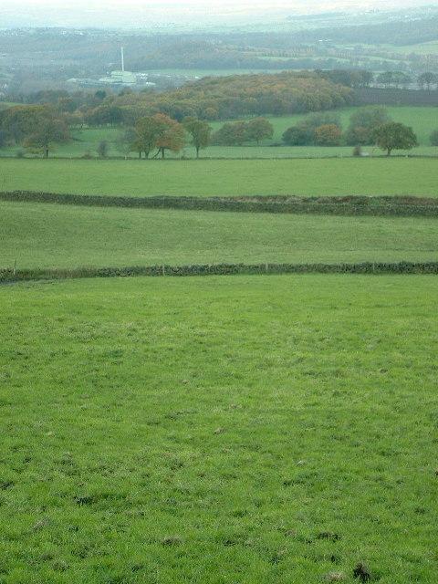 Across North Moor towards Heaton Hall Wood