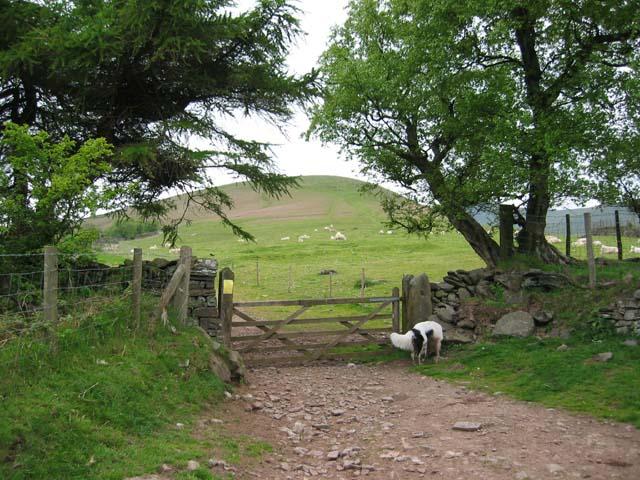 Gateway to Bryn-teg