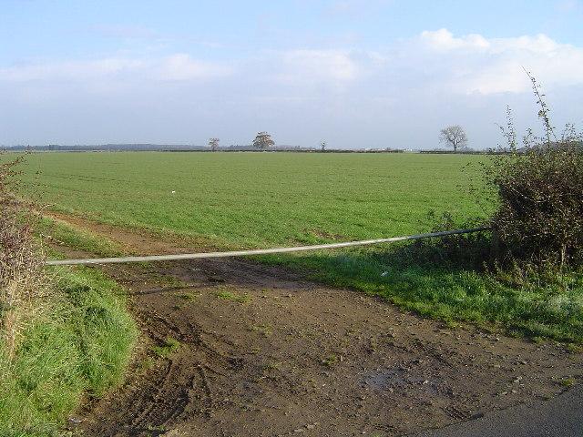Field near Collyweston