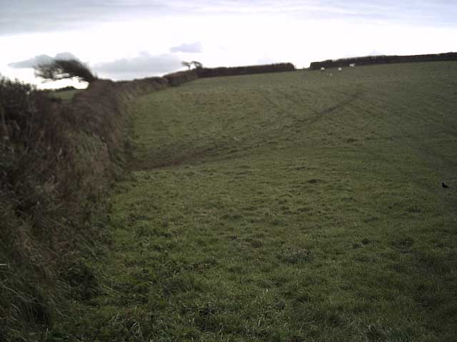 Farmland on Whitegate Hill