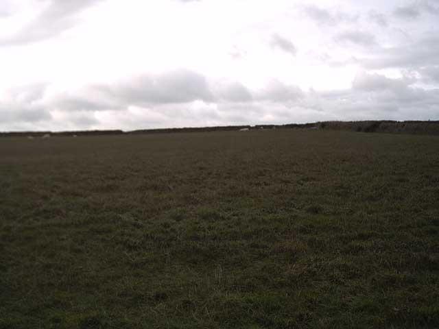 Farmland near Roadway Corner