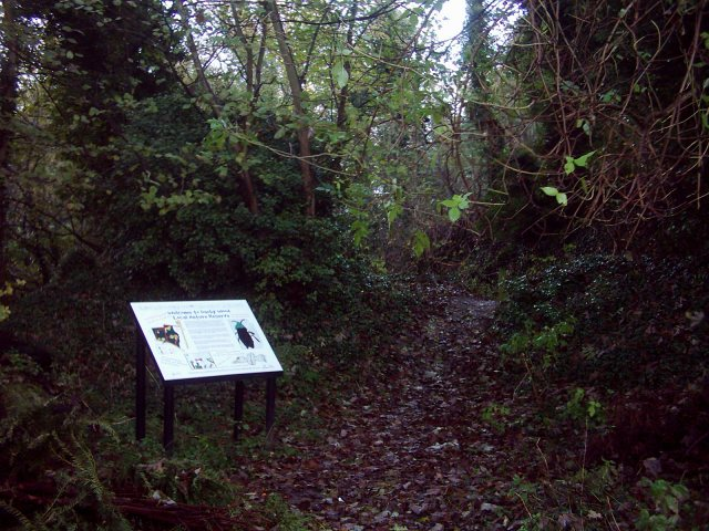 Danby Wood Local Nature Reserve
