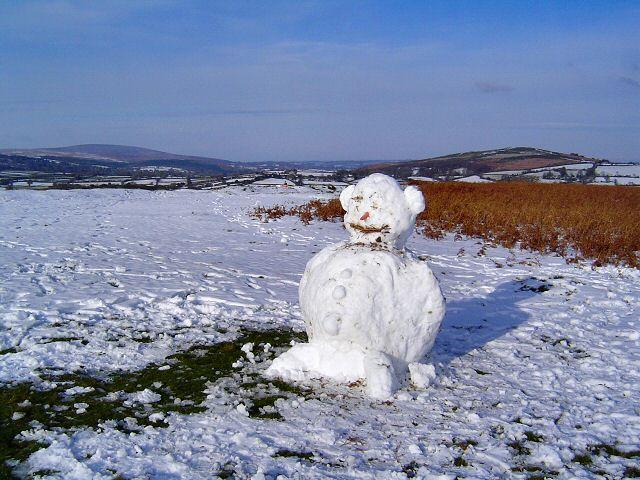 Dartmoor snowman
