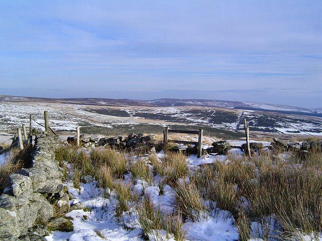 East Broad Down - Dartmoor