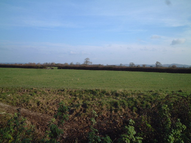 Fields from St Georges