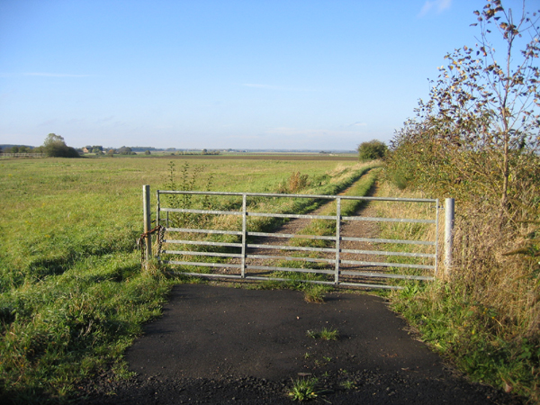 Fenland view with gate, Eye Green, Peterborough