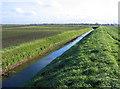 TF2305 : Roddon ridge, Fenland farmland, north of Eye Green, Peterborough by Rodney Burton