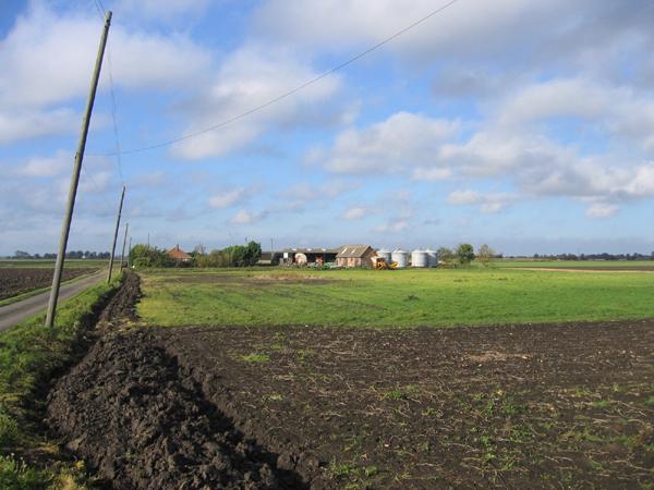 Fenland smallholding, Newborough Fen, Peterborough