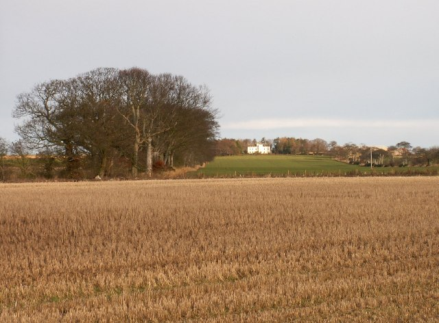 Farmland by Airdrie