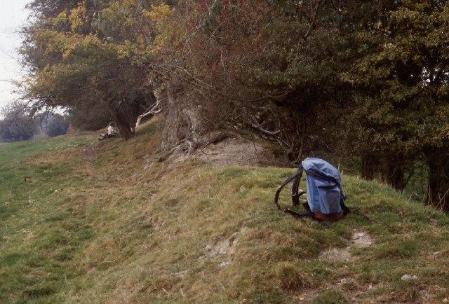 Offa's Dyke near Caeaugwynion Farm