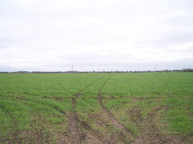 Field near Stoulton