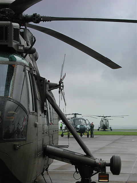 RNAS Culdrose, Naval Air Station