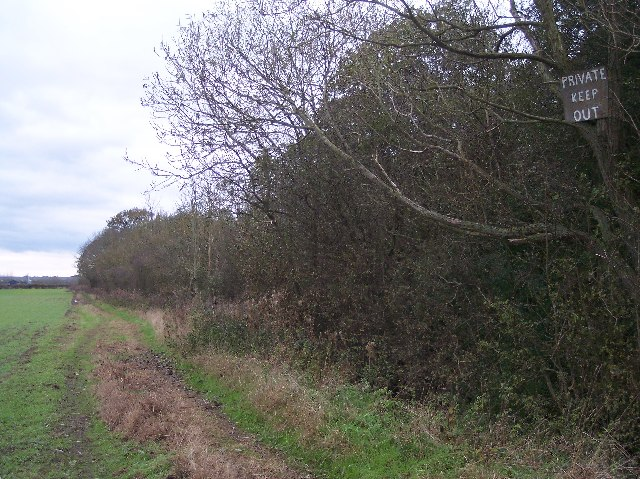 The Coppice,  Bishampton