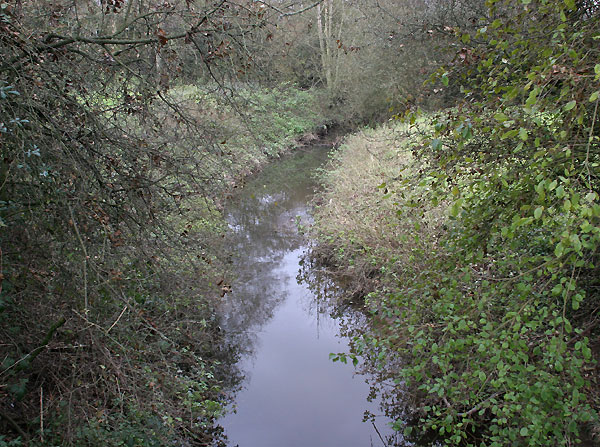 Stream near Goddards Green, West Sussex