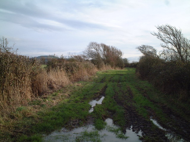 Farm Track & Bridleway