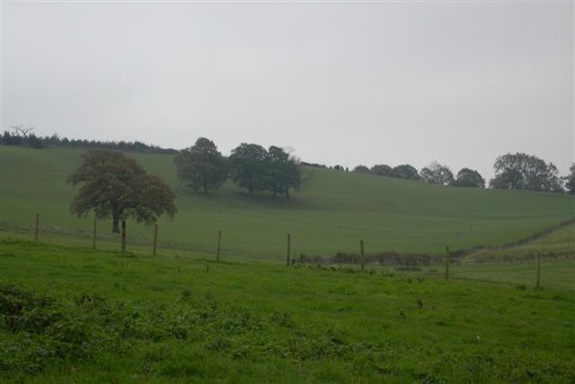 Rowe Barn Farm