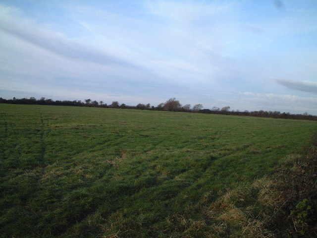 Field near Middle Burnham