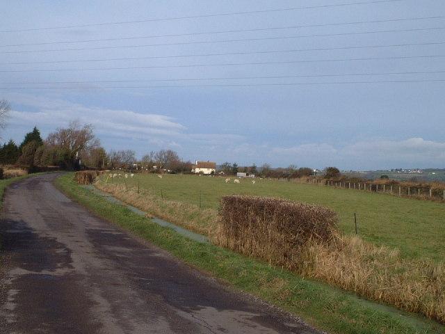 Field near Wick
