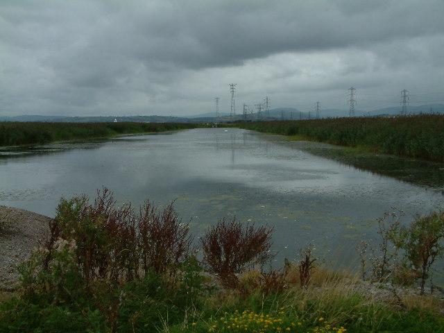 Newport Wetlands Reserve, Gwent levels.