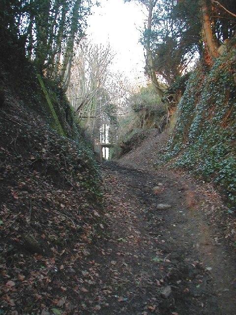 Russell Mill Lane near Lavington Manor