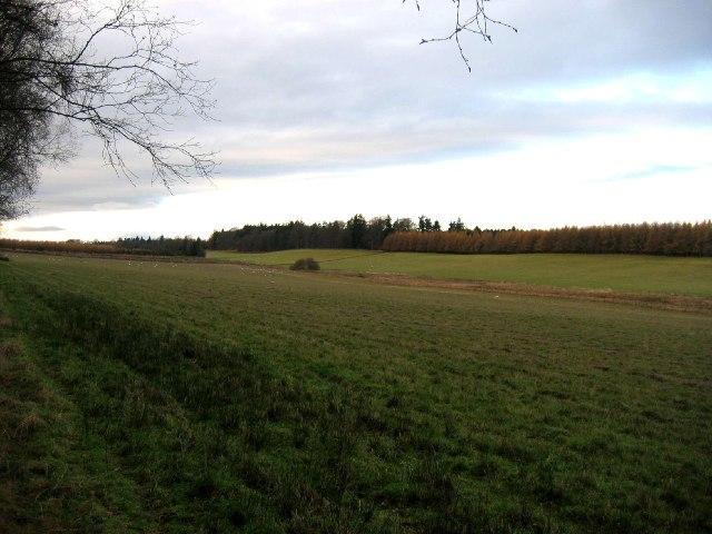 Blackhill Park
