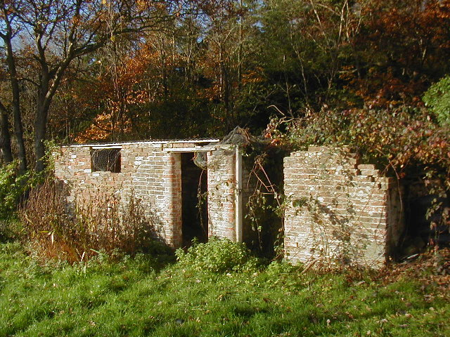 Derelict Buildings by Acorn Cottage on the edge of Plashetts Wood