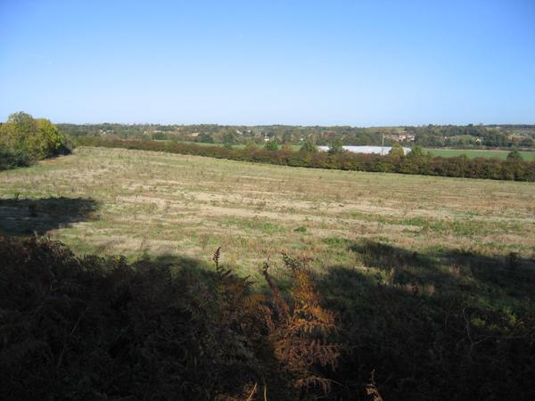Flit valley, Clophill, Beds