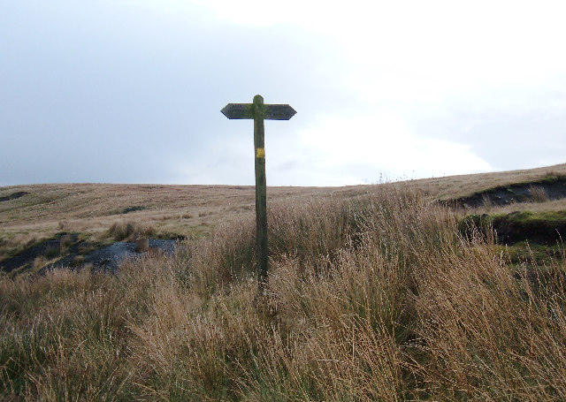Signpost on Reaps Moss