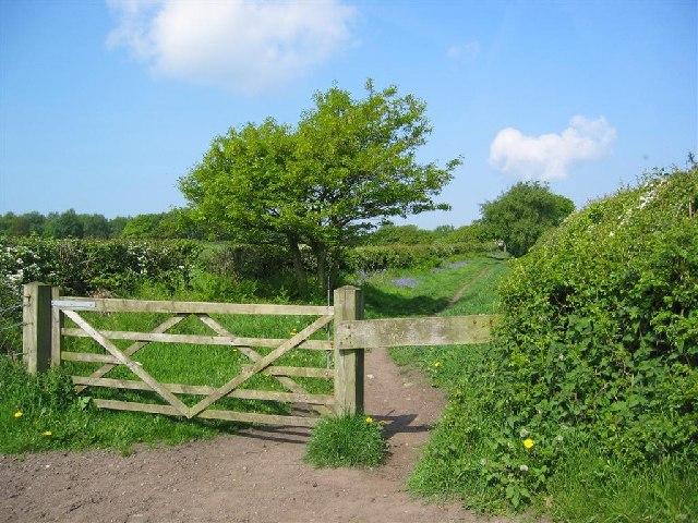 Footpath, Snidley Moor
