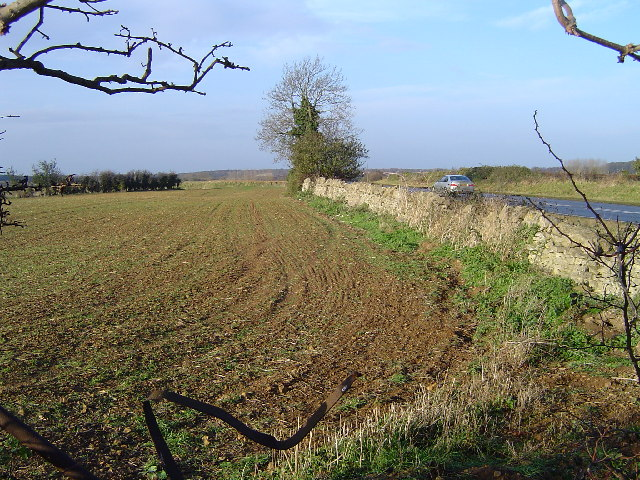 A47(T) & field, west of Wansford