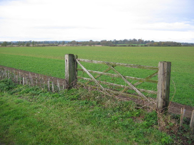 Farmland NE of Leconfield