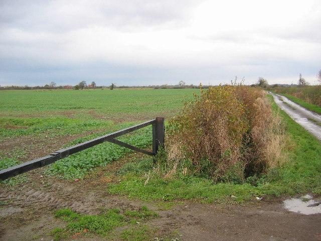 Molescroft Carr Farm