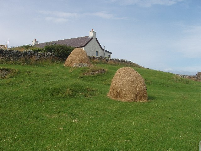 Haycocks on West Burra, Shetland