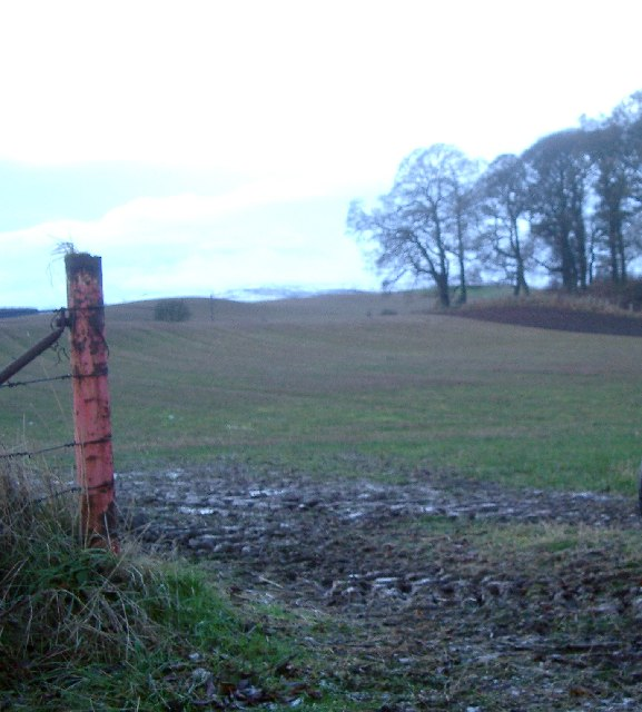 Field entrance, near Bankfoot