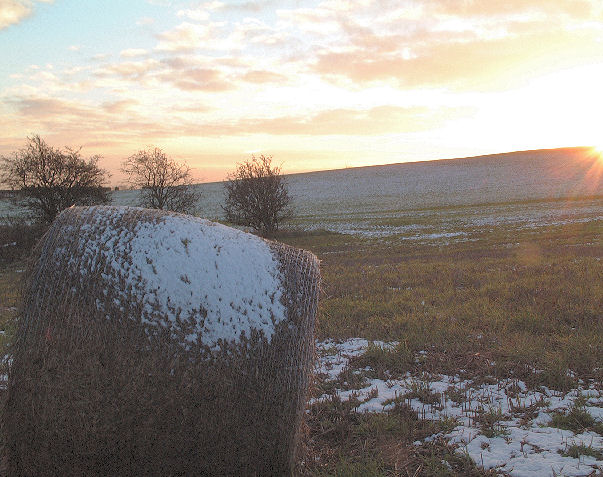 Snow, straw and sunset