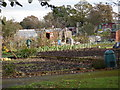 SP1583 : Allotment Gardens at Hatchford Brook, Sheldon by peter lloyd