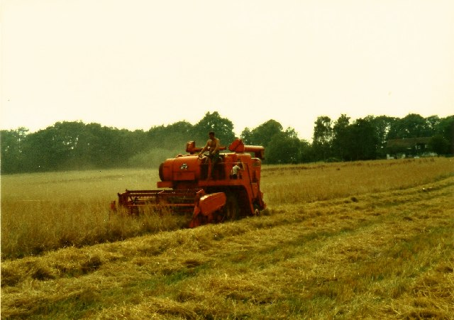 Combining at Belchamber's Farm