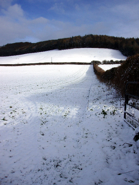 Snowy fields in the Golden Valley